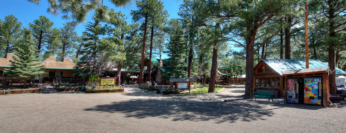 Local Activities at StoneWall Lodge in Weston, Colorado